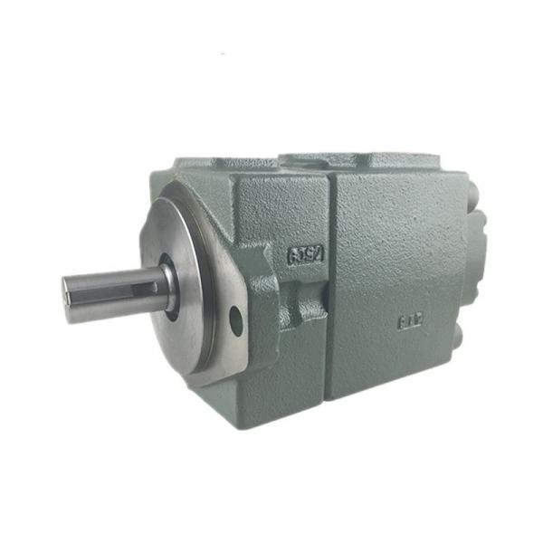 Yuken PV2R23-47-125-F-RAAA-41 Double Vane pump #2 image